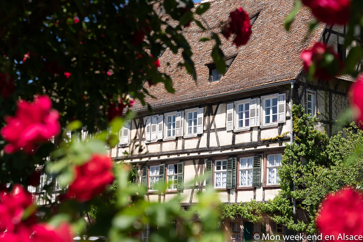maison-colombages-wissembourg